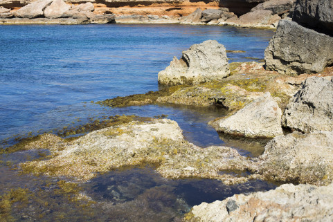 'Help! I'm a rock!'. Ibiza. May 2016